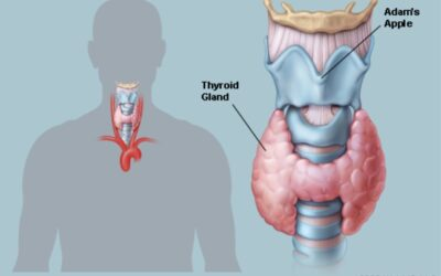 Thyroid Diagnosis and Monitoring